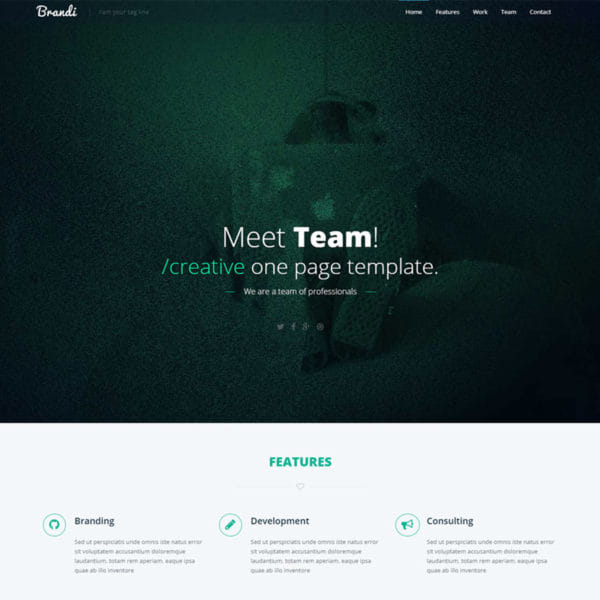Brandi – Responsive One Page Bootstrap Business Template