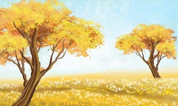 Fall Landscape Background Grassland Illustration