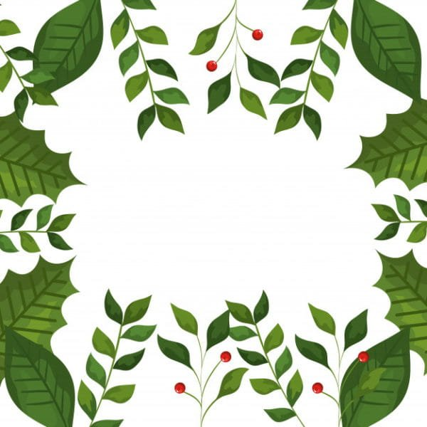 Frame of leafs and branches (Turbo Premium Space)