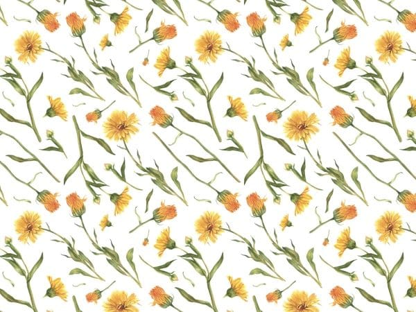 Pattern Of The Flower Background (Turbo Premium Space)