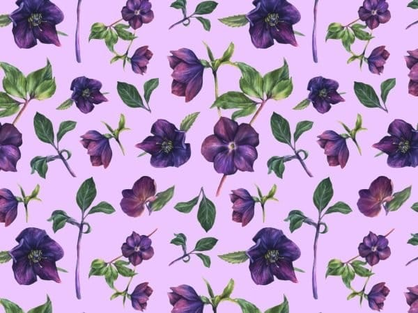 Pattern Of The Purple Flower Background