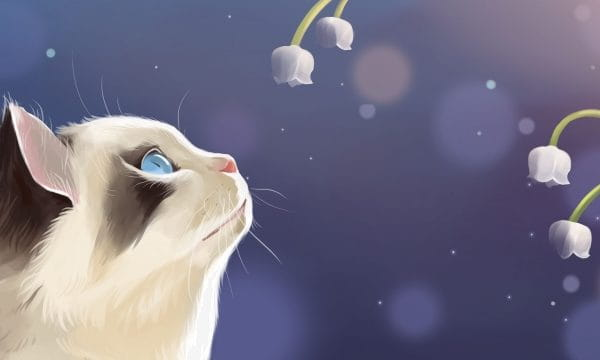 Cat Cute Pet Flower Lily Of The Valley Illustration (Turbo Premium Space)