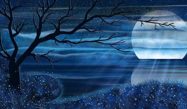 Romantic Starry Moonlight Reflection Illustration